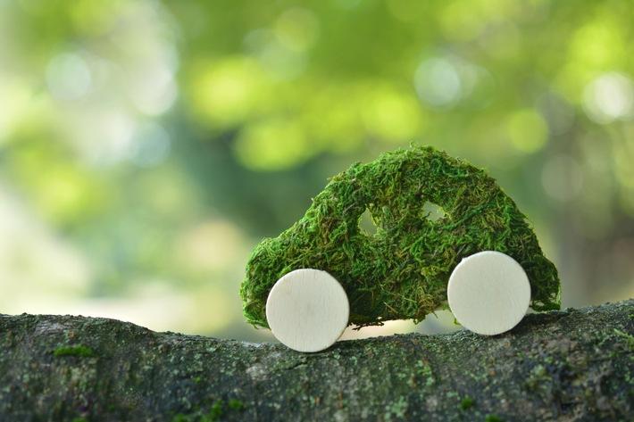 ZAHL DER WOCHE: Umweltfreundliche Autos sind gefragt