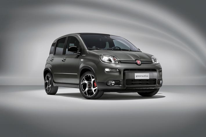 Pünktlich zum 40. Geburtstag: Fiat Panda mit vielen Neuheiten